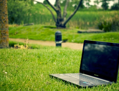 laptop on green grass