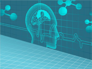 An illustration of the human brain